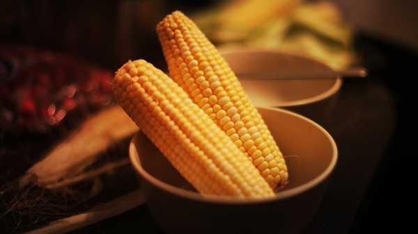 Можно ли кукурузу при гастрите – Кукуруза при гастрите – можно ли есть консервированную, вареную? Меры предосторожности и ограничения